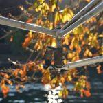 Racconto d'autunno: il mio SilverSkiff